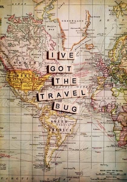 travelbug