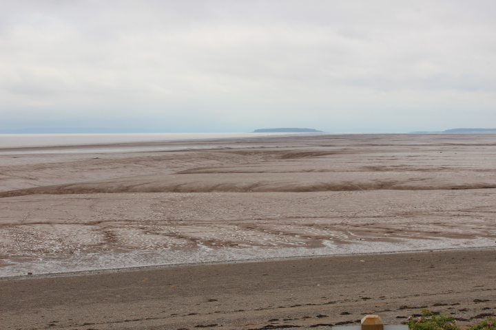 Mud Flats during low tide