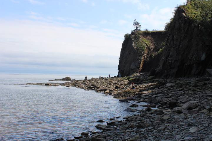Beach at Cape Enrage